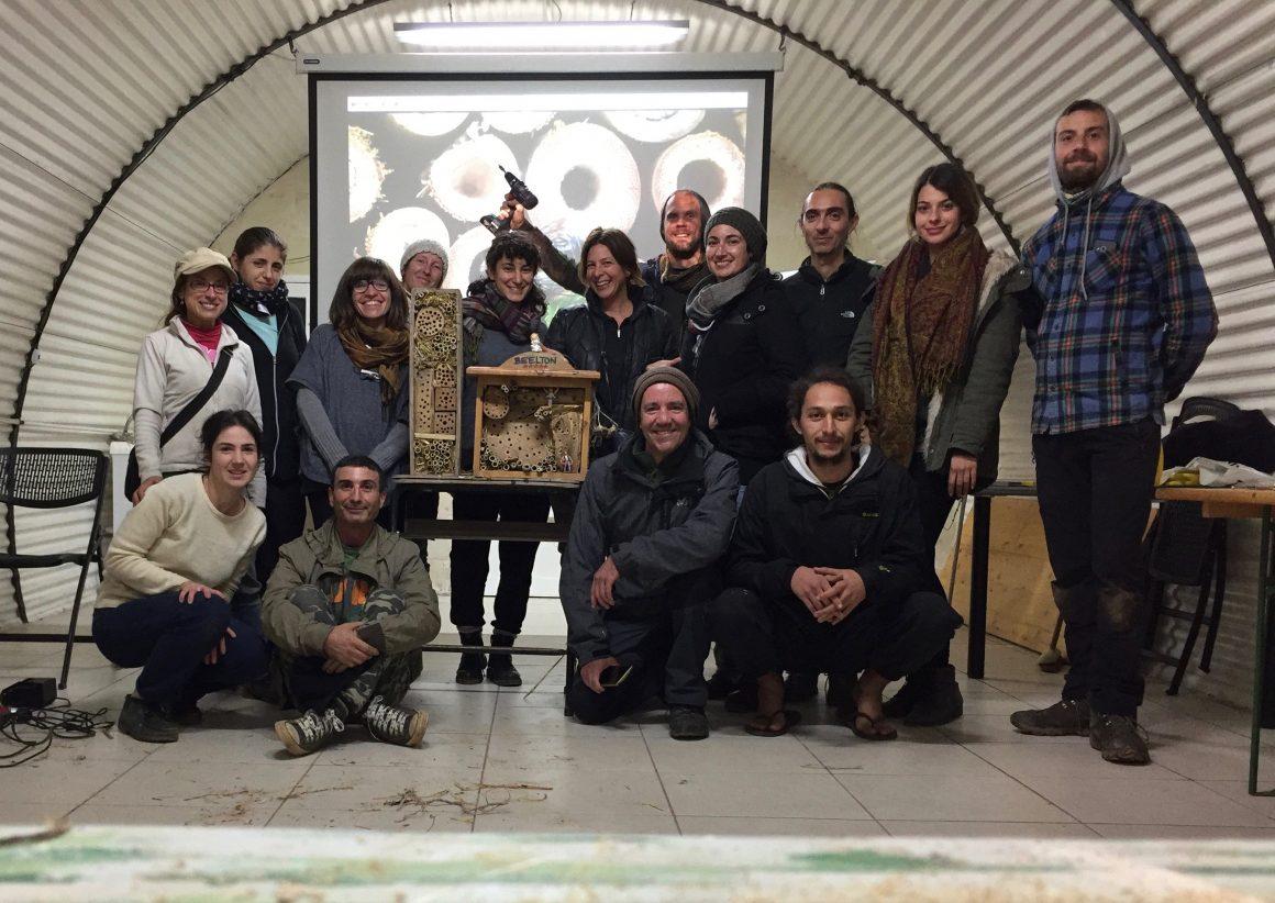 Bee Sustainable – School of Sustainability Activist Camp