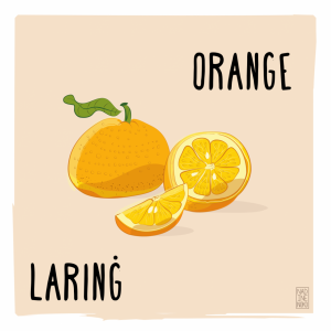 What's in Season: December – Orange