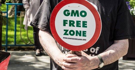 Will GMO 2.0 come to Europe via the back door?