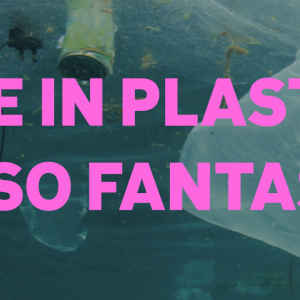 Life in plastic, not so fantastic