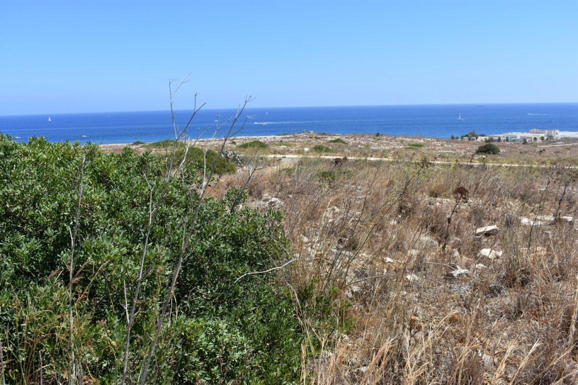FoE Malta calls for Pembroke open space to remain for public enjoyment
