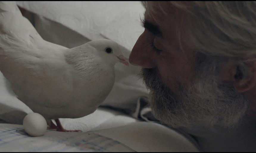 Winning Films – ĊINE'AMBJENT 2019