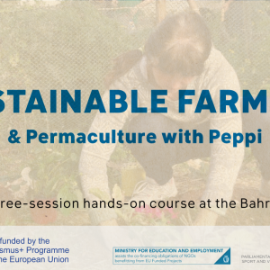 Sustainable Farming & Permaculture with Peppi (3 Sessions)
