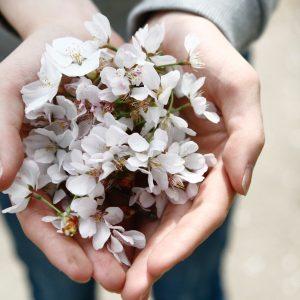 Rethinking gift giving