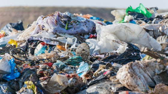 First steps taken to cut single-use plastics in Europe