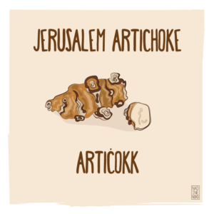 What's in Season: January – Jerusalem Artichoke