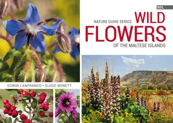 Book Review: Wild flowers of the Maltese Islands