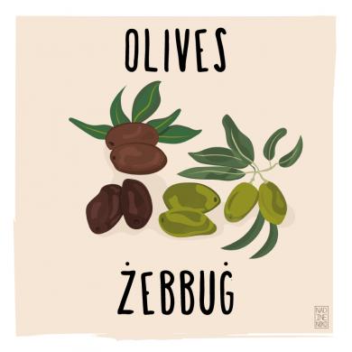 olives_colour-01-390x390