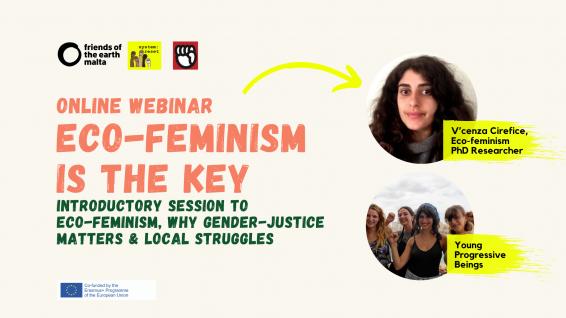 graphic-eco-feminism