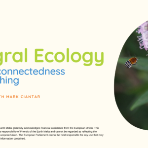 Integral Ecology – the interconnectedness of everything