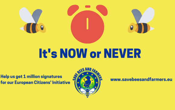 Last day to support bee saving initiative