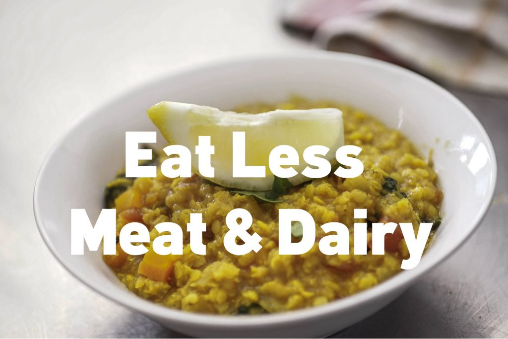 Consuming too much meat and dairy is a main cause of climate change. Tips to consume fewer animal products and more veg.