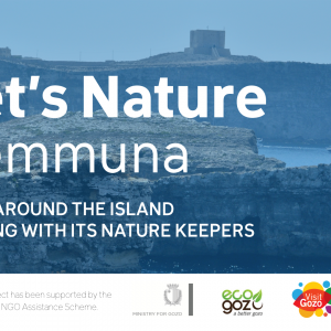 Kemmuna – Let's Nature
