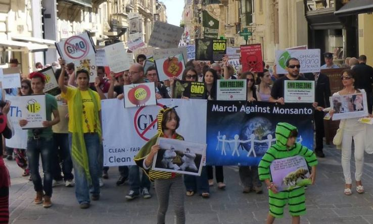 EU's top court confirms safety checks needed for new 'GMO 2.0'