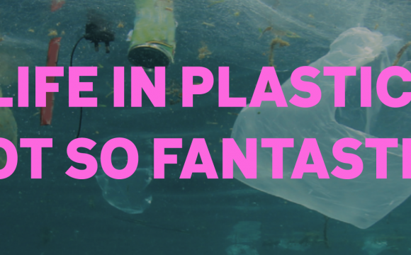 Life in plastic, not so fantastic
