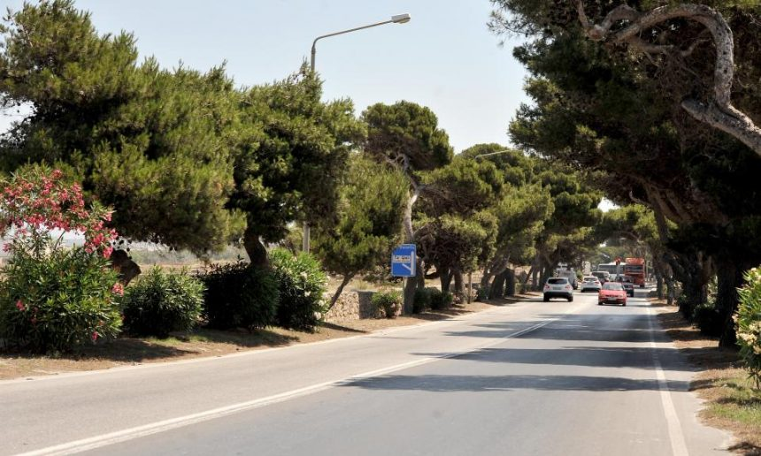 NGOs: Attard Road Objections