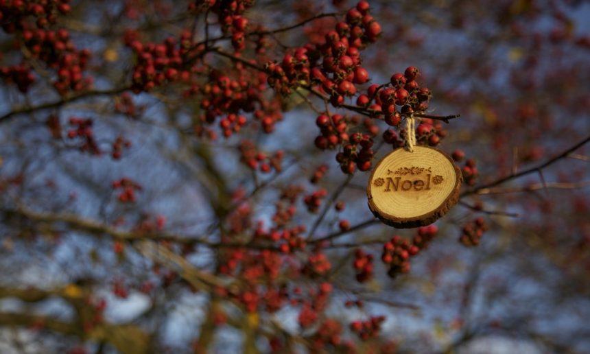 Zero Waste Christmas!